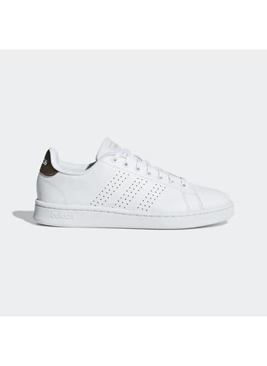 adidas Advantage Kadın Sneaker Ayakkabı Renkli